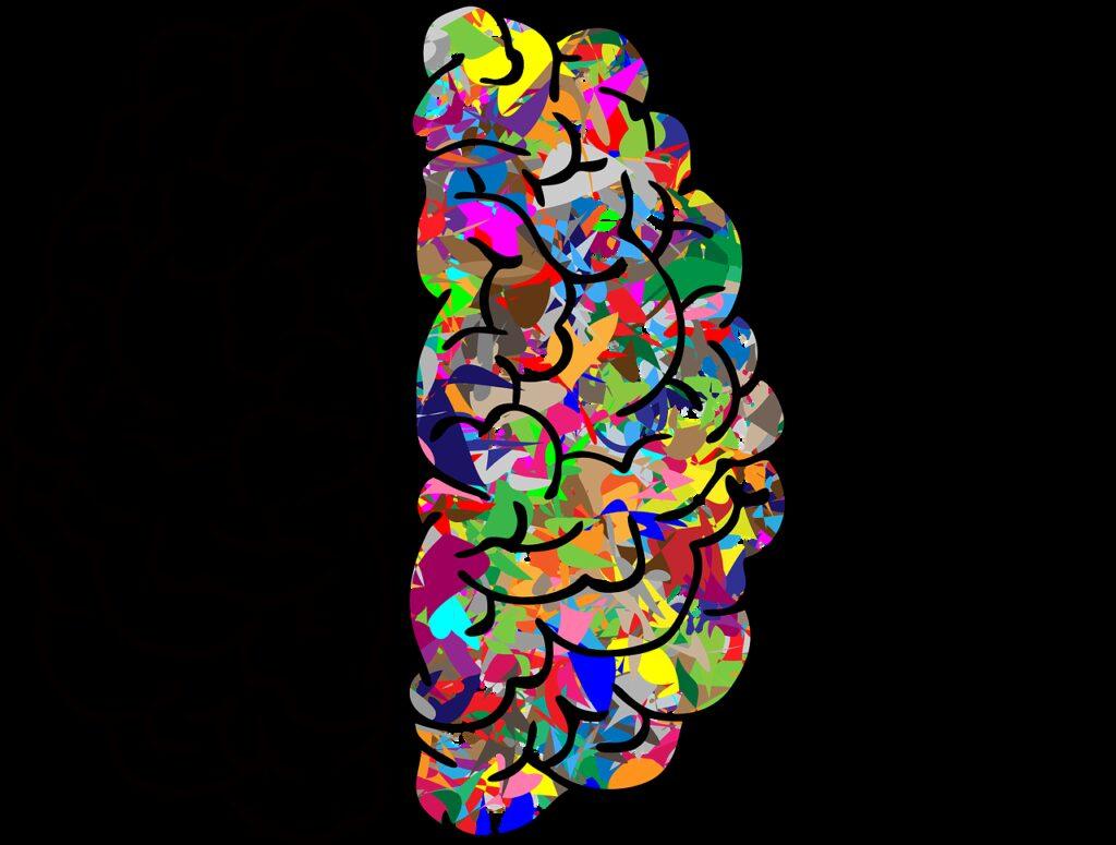 brain, mind, a